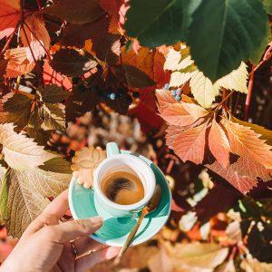 Espresso liści zielona filiżanka złota kawiarnia individual najlepsza kawa ciasta kanapki Krakowie